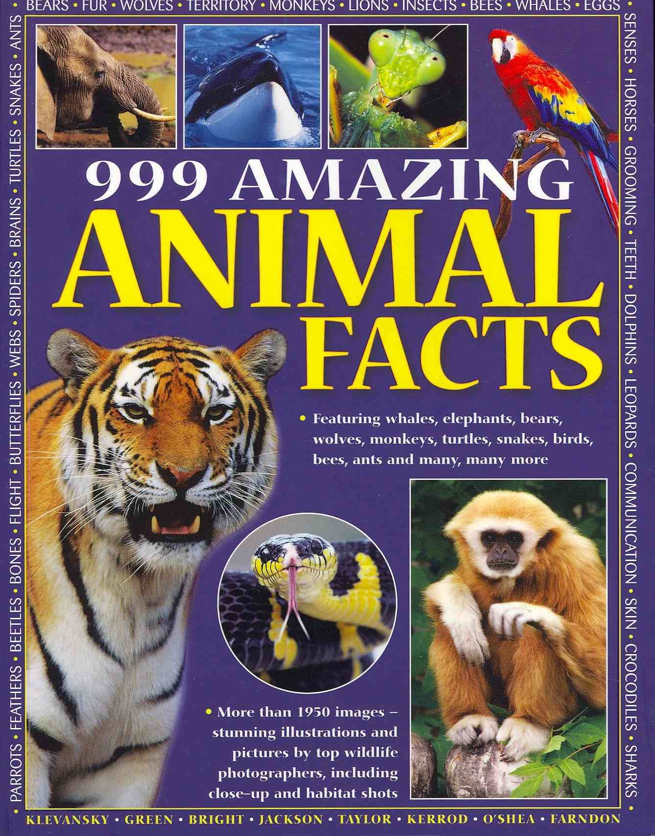 999 Amazing Animal Facts By Klevanksy, Rhonda (EDT)